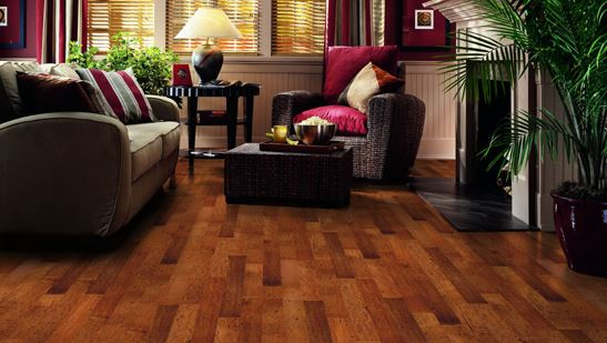 Wood cleaning furniture and wood floors of your home